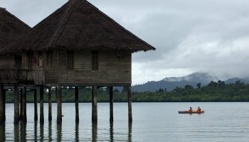 Chalet kayakers